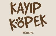 Kayıp Köpek Türkiye