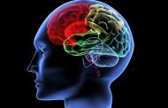 Beyin Bilgileri Silmiyor, Sadece Ulaşamıyor